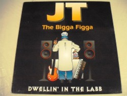 JT The Bigga Figga - Dwellin' In The Labb / Put Yo Mack Hand Down